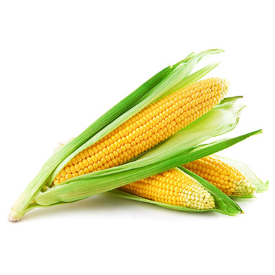 VegProducts - _0005_Corn Pic